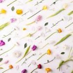 Fleurs et Astrologie